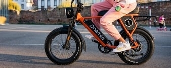 Category e-bike